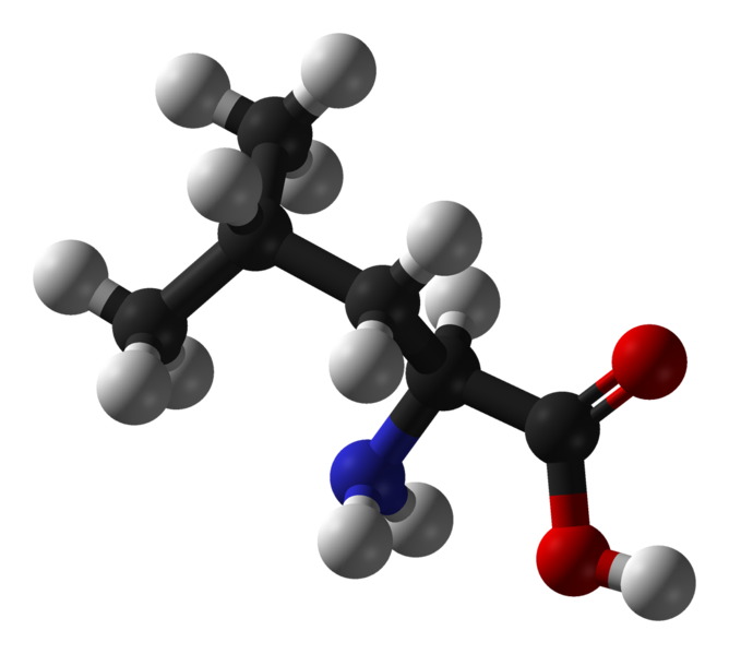 aminosyror fakta