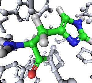 Den essentiella aminosyran Histidin