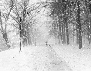 På vintern kan man bli deprimerad